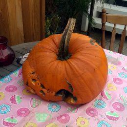 Halloween ist vorbei. Auch für unseren Kürbis.